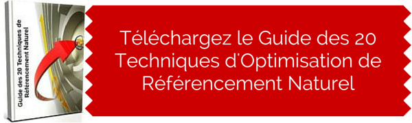 telecharger le guide de referencement naturel