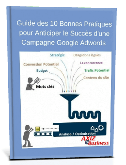 guide d'optimisation de campagnes adwords