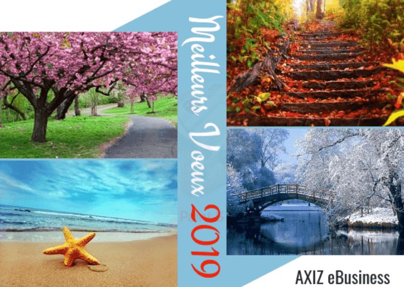 Meilleurs-Voeux-2019-axiz-ebusiness